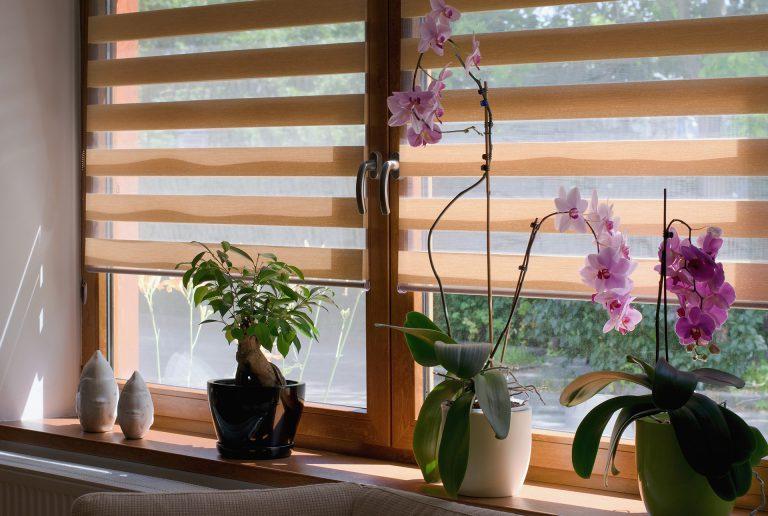 Solombra-raamdecoratie-duo-rolgordijn-beige